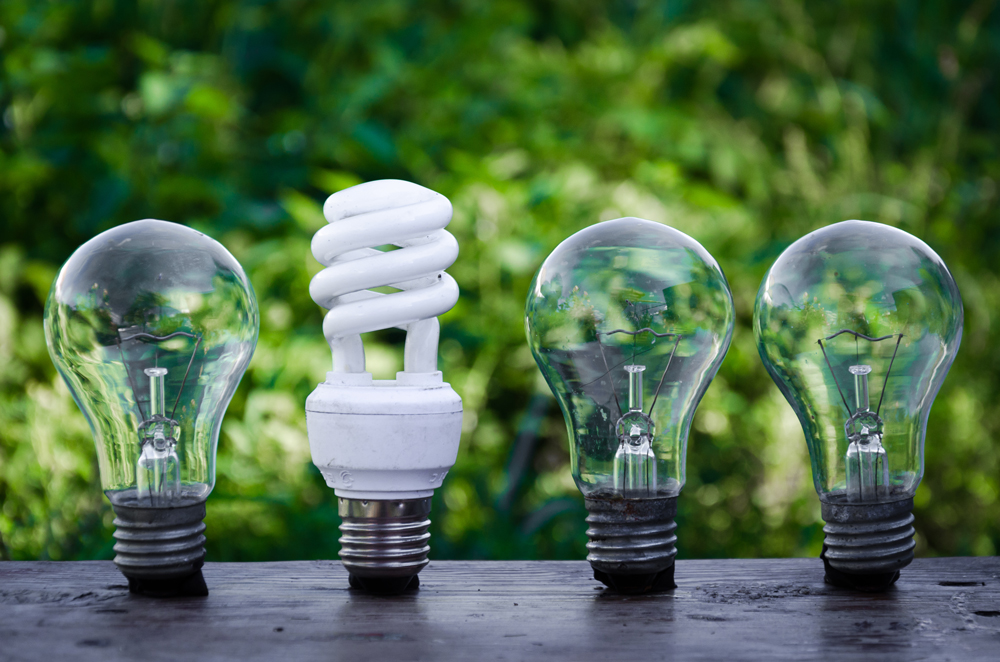 Stock image of low energy light bulbs